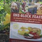 Thumbnail image for One-Block Feast: A Book Review