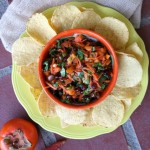 Thumbnail image for Persimmon Pomegranate Salsa